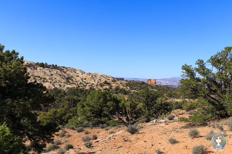 Tolle Aussicht vom Cowboy Camp auf den Canyonlands National Park