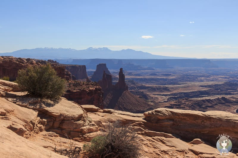 Aussicht in den Canyonlands National Park