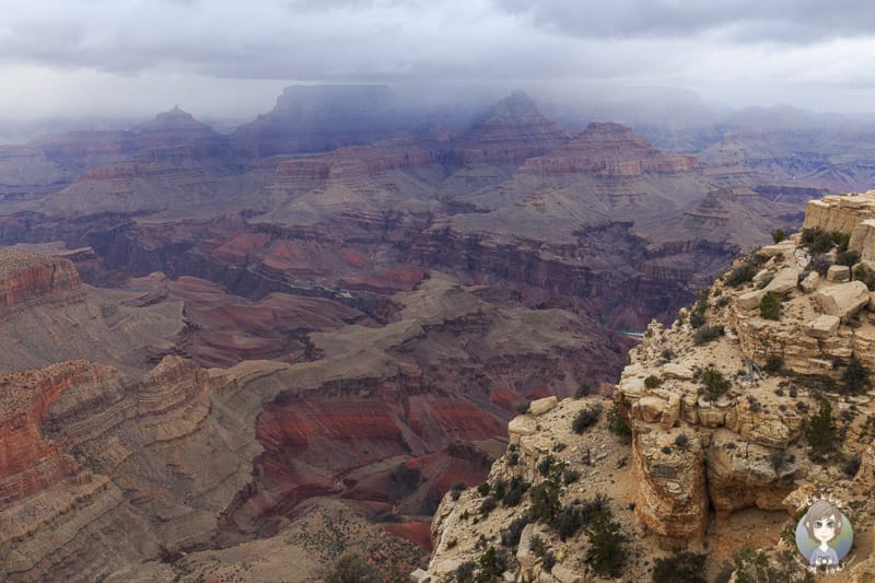 Blick vom Lipan Point auf den Grand Canyon