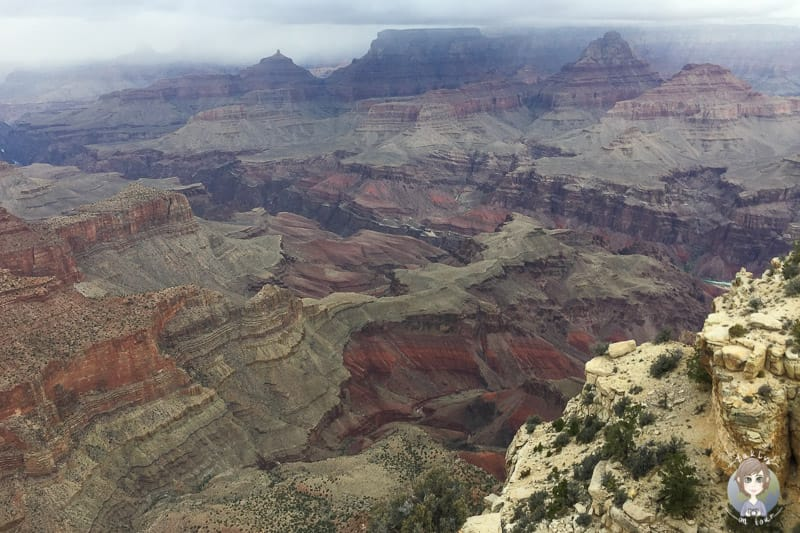 Beeindruckende Aussicht vom Moran Point auf den Grand Canyon