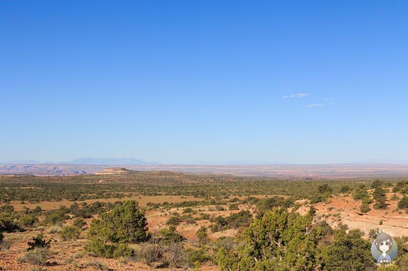 Aussicht vom Cowboy Camp