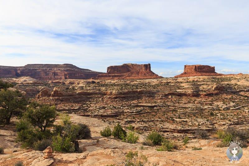 Fantastischer Blick vom Big Mesa Viewpoint