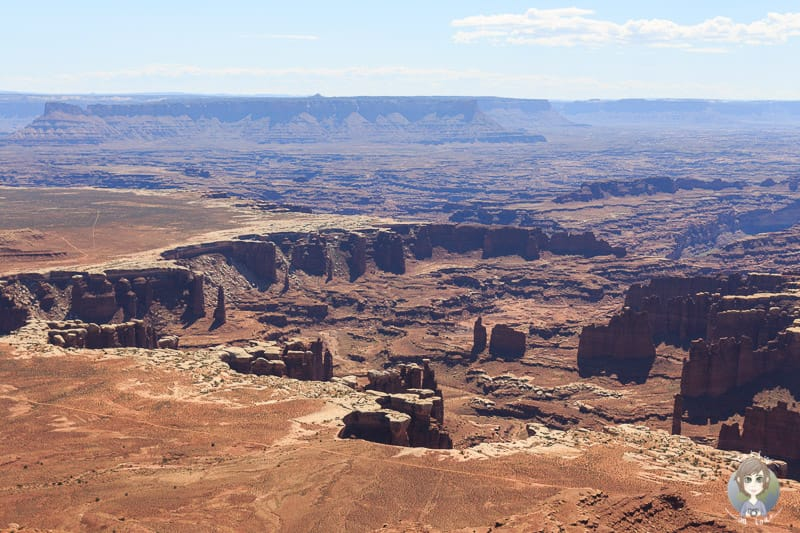 Ausblick vom Buck Canyon Overlook