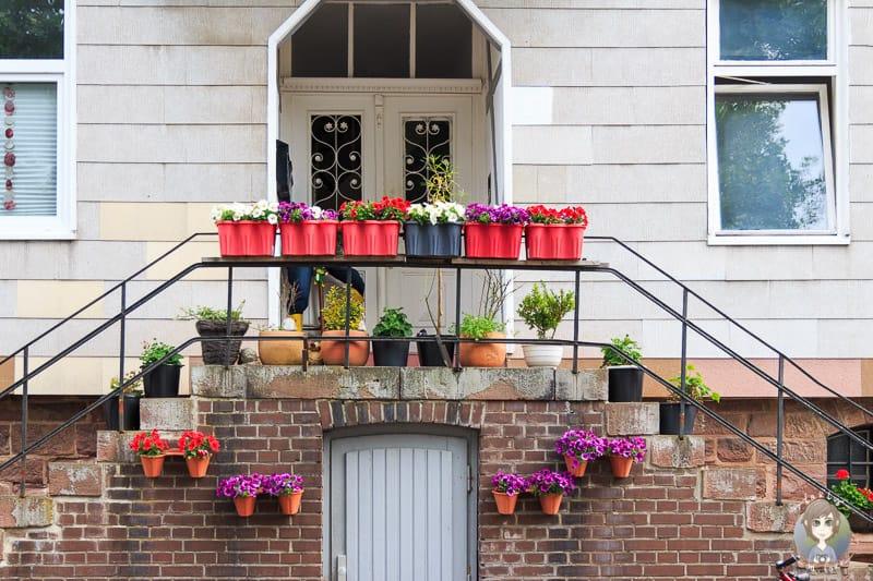 Bunte Blumen an den Häusern in Beverungen