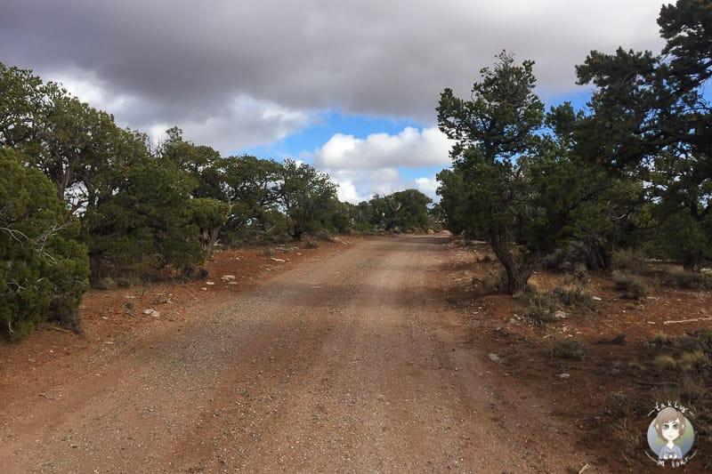 Campingplatz im Navajo National Monument