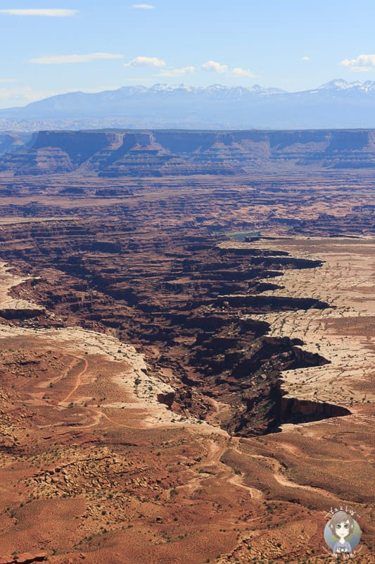 Detailaufnahme vom Canyon am Grand View Point