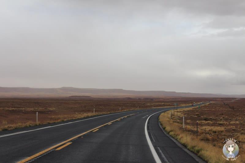 Desert View Drive Richtung Cameron