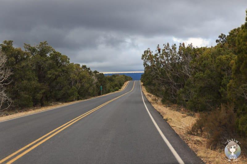Fahrt entlang des South Rim am Grand Canyon