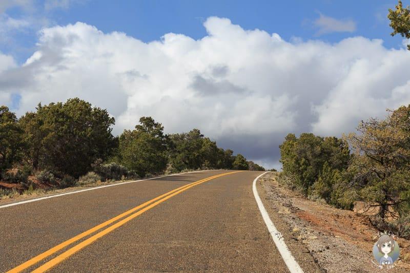 Fahrt zum Navajo National Monument