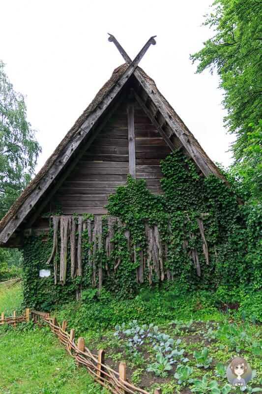 Ein Garten von einem Germanenhof im Freilichtmuseum Oerlinghausen