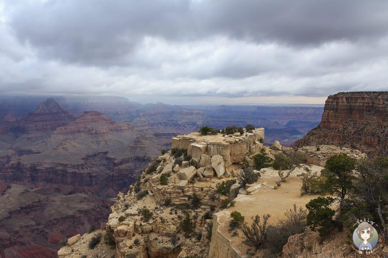 Toller Ausblick vom Moran Point auf den Grand Canyon