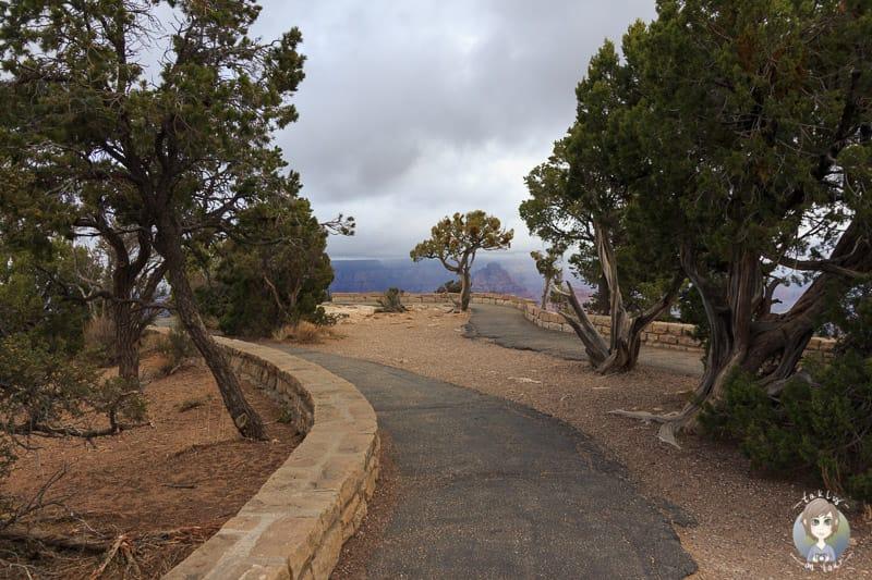 Aussichtspunkt am Moran Point
