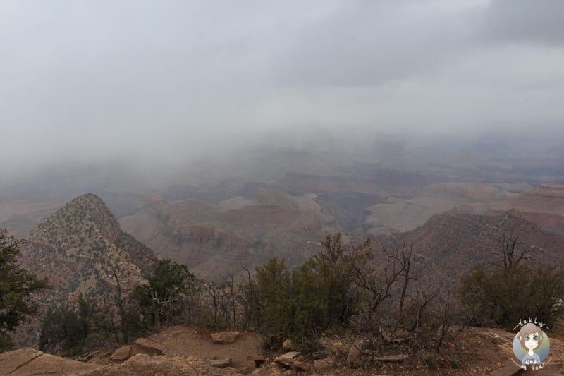 Nebel am Aussichtspunkt Grand View am Grand Canyon