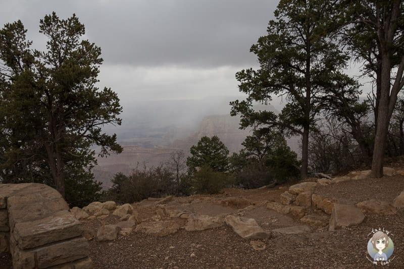 Nebelschwaden am Grand View Point