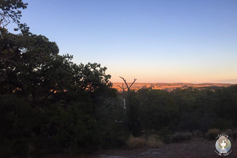 Sonnenuntergang auf dem Canyon View Campground
