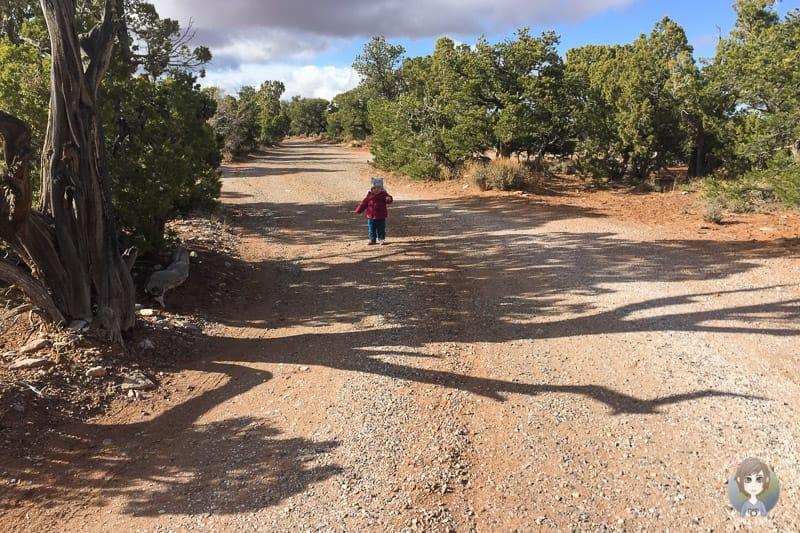 Spaziergang durch die Wüste