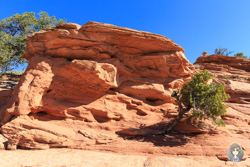 Sehenswerte Steinformationen auf der Wanderung zum Mesa Arch