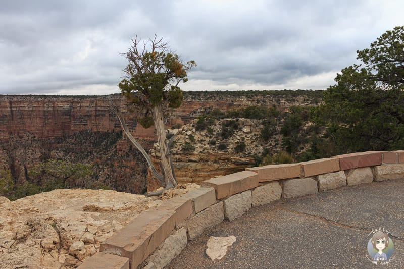 Kleine Mauer am Moran Point