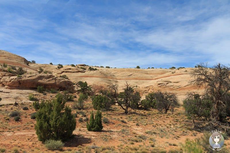 Slide Rocks und ein Fels Plateau von einem Viewpoint
