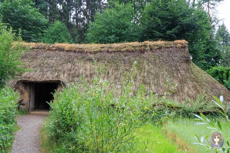 Ein Wohnstallhaus aus der Bronzezeit