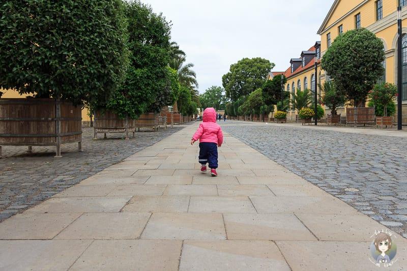 Stadterkundung mit Kind in Hannover