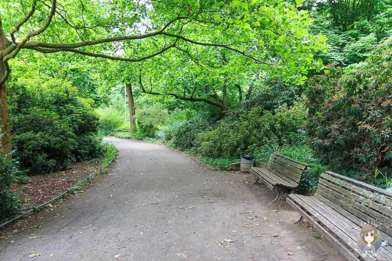 Schöner Spaziergang um den Maschteich