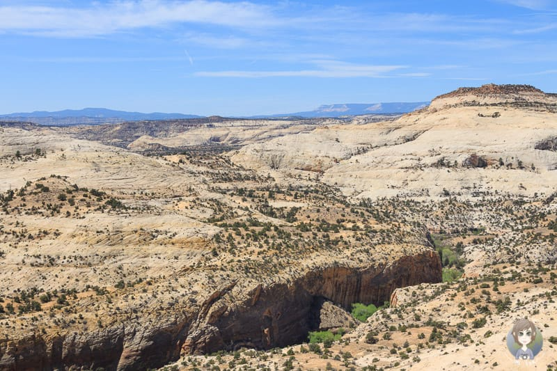 Die Aussicht auf das Grand Staircase Escalante National Monument