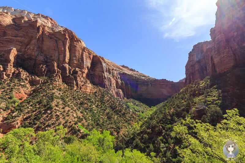 Blick von einem Aussichtspunkt auf den Zion Canyon