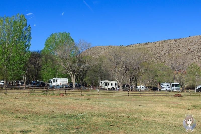 Schöne Stellplätze auf dem Fruita Campground
