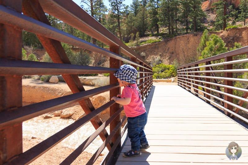 Freude auf einer Brücke