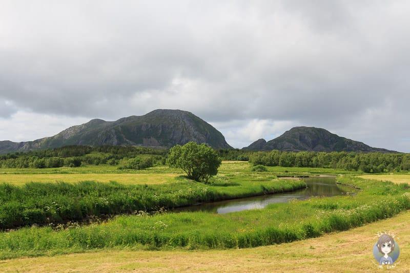 Landschaft um Brønnøysund