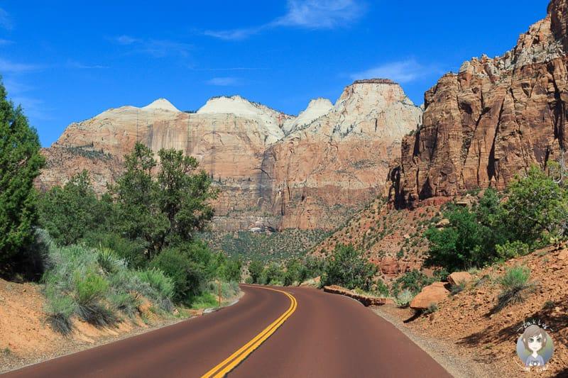 Die traumhafte Landschaft auf der Fahrt durch den Zion National Park