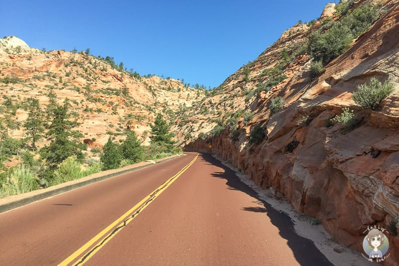 Fahrt durch den wunderschönen Zion National Park