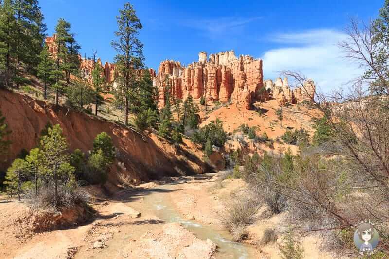 Eine tolle Landschaft auf der Wanderung im Bryce Canyon Nationalpark