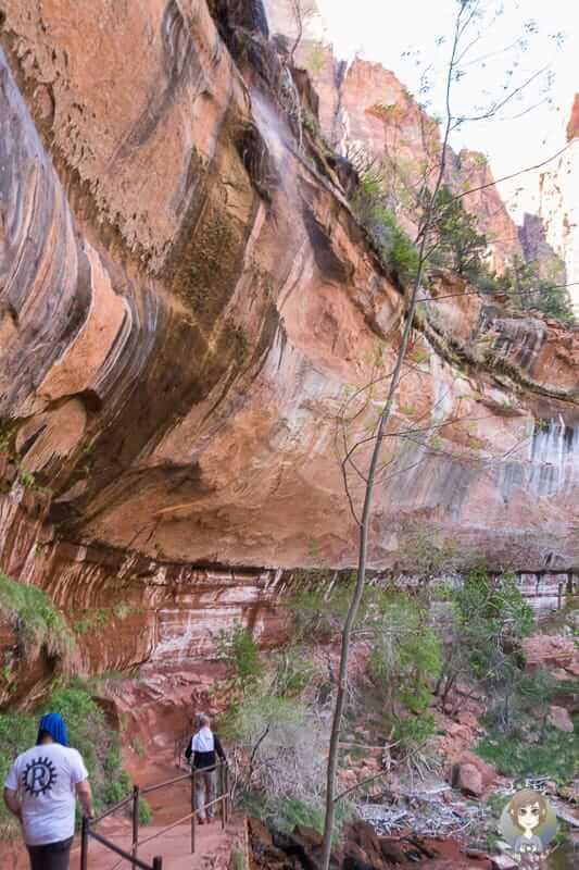 Der Weg zu den Emerald Pools im Zion National Park