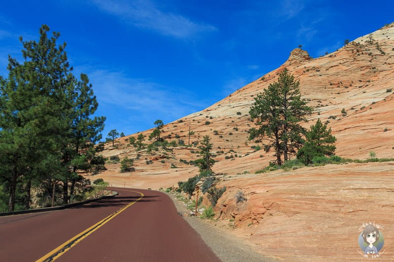 Slide Rocks am Rand der Straße des Zion National Parks