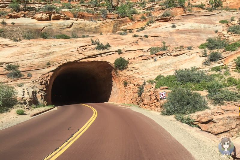Der erste Tunnel im Zion ist normal zu befahren