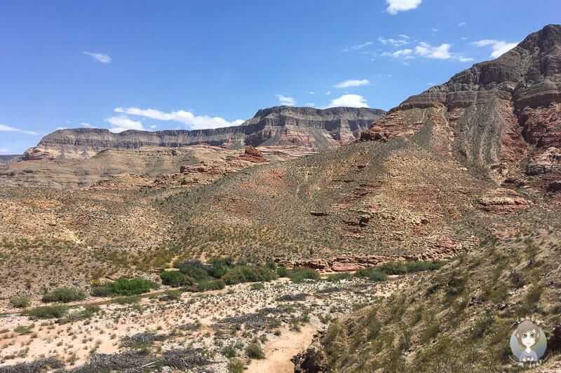 Ausblick auf den Virgin River Canyon