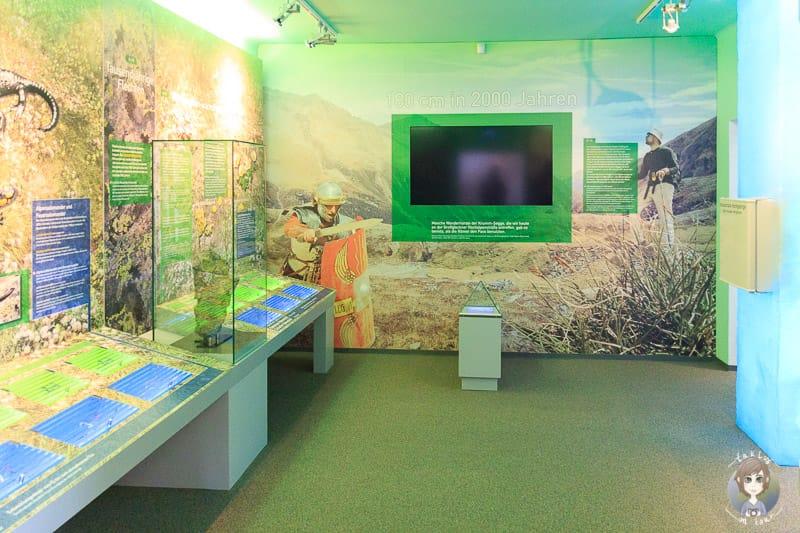 Die Ausstellung im Haus Alpine Naturschau