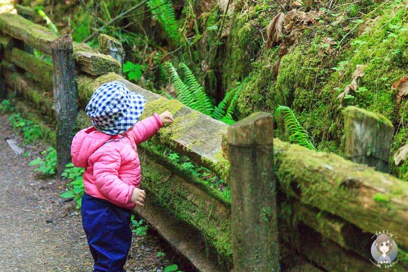 Ein Kind erkundet einen moosbewachsenen Zaun auf einer der Fernreisen mit Kindern
