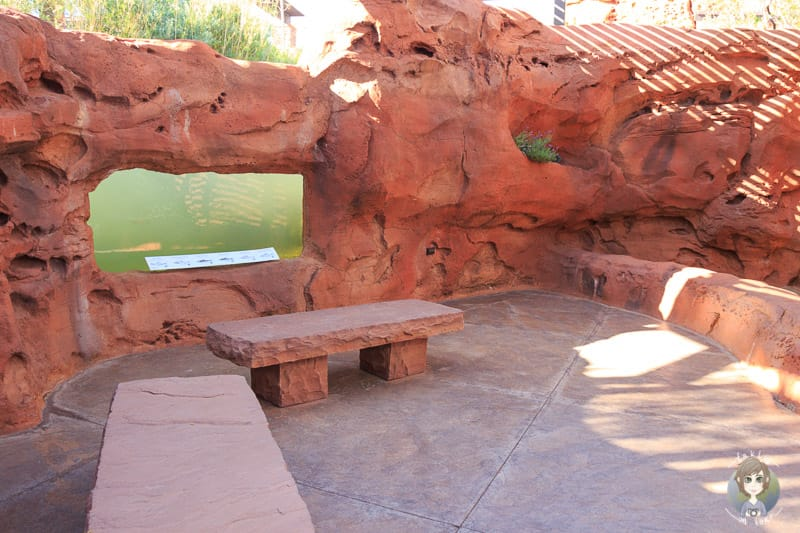 Der Slot Canyon im Red Hills Desert Garden Park