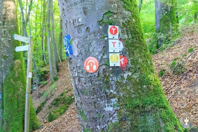 Wanderwegweiser und Markierungen der Teufelsschlucht Wanderung