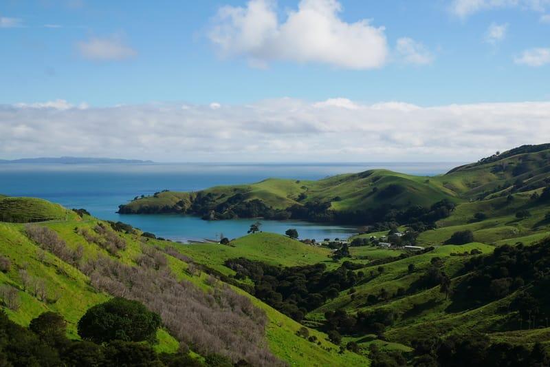 Blick über Coromandel in Neuseeland