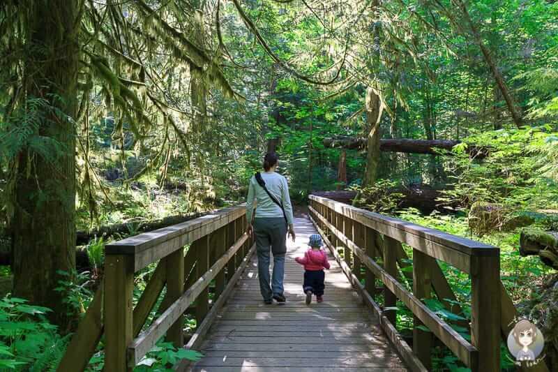 Eine Wanderung mit Kleinkind durch den Wald