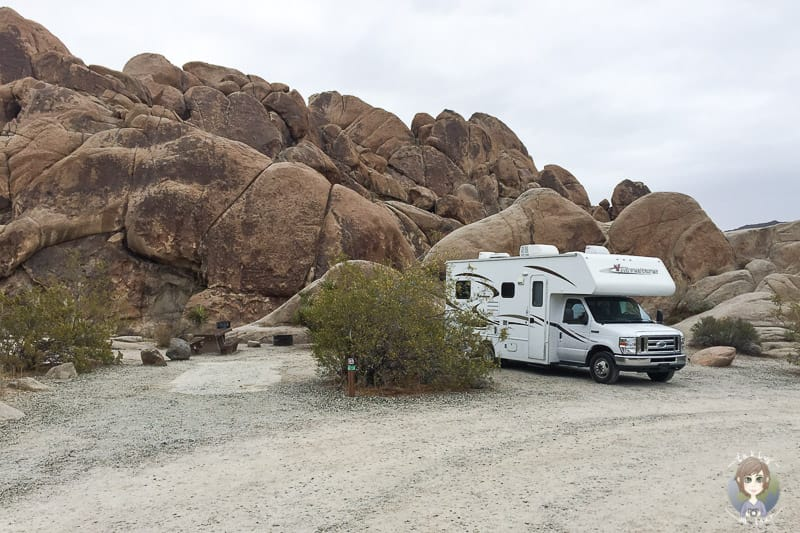 Indian Cove Campground Joshua Tree