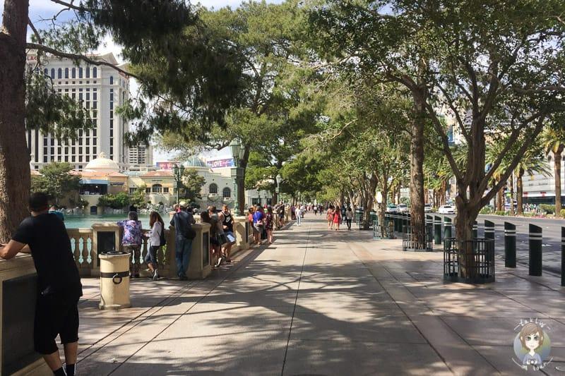 Tagsüber gibt es nur wenige Besucher bei der Wassershow vom Bellagio in Las Vegas