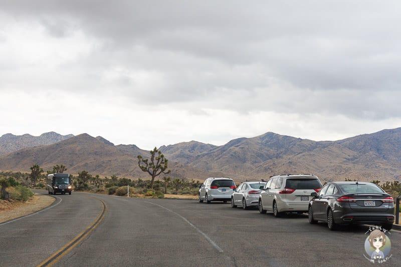 Parken an der Straße im Joshua Tree National Park
