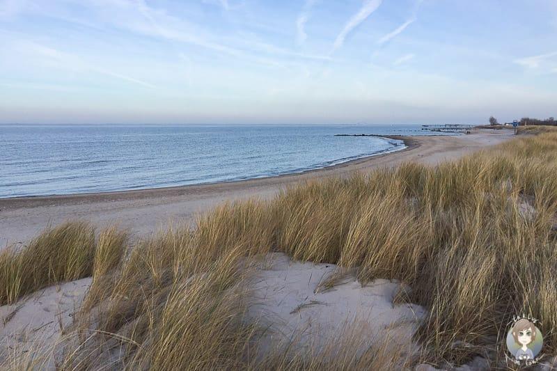 Blick über den Strand beim Urlaub in Heiligenhafen an der Ostsee