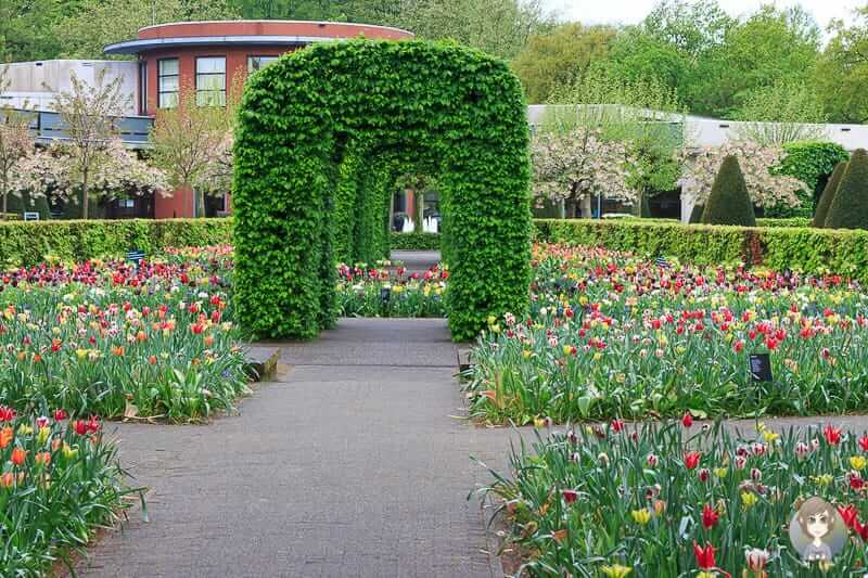 Beete im Blumenpark in Holland