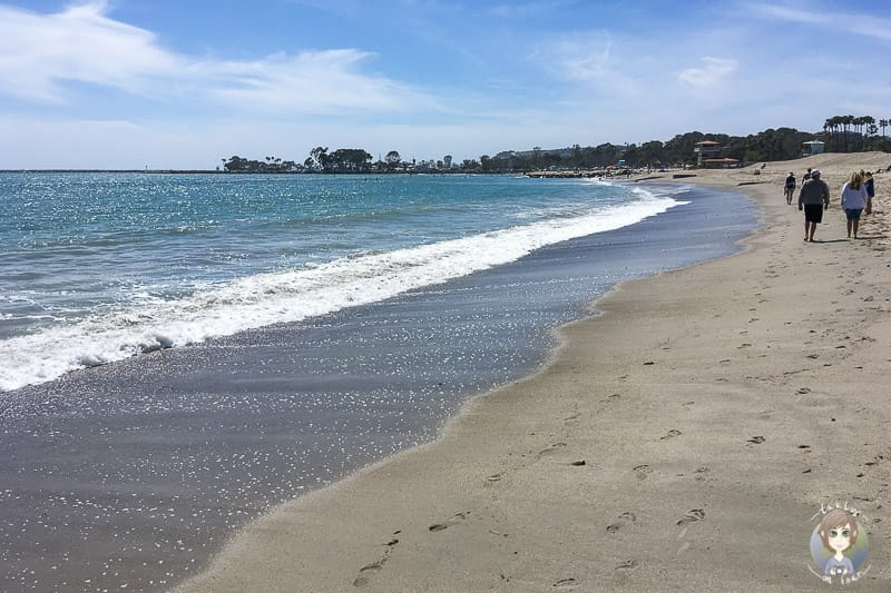 Doheny State Beach Dana Point